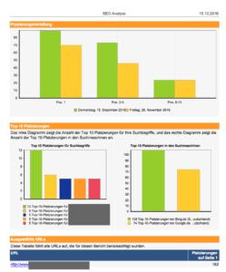 SEO Analyse Bericht