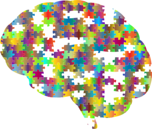 Neue Impulse mit Braintrust